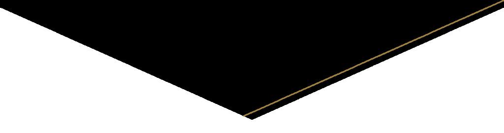 shape divider gouden rand rechts